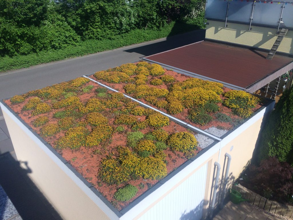 Sehn Fertiggarage mit Dachbegrünung