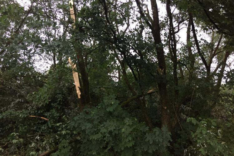 Sturm und Hagel
